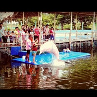 Photo taken at Oasis Sea World by Davinda Z. on 4/4/2013