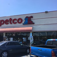 petco 10 tips from 1219 visitors