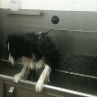 Photo taken at Petco by Laura S. on 12/23/2011