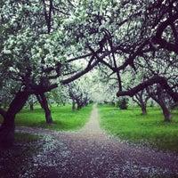Снимок сделан в Яблоневый сад пользователем Dmitriy L. 5/12/2012