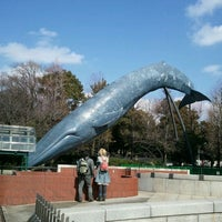 Das Foto wurde bei National Museum of Nature and Science von Hidetoshi O. am 3/11/2012 aufgenommen