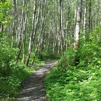 Photo taken at Big Tree Ridge Trailhead - Cougar Mountain by Steve B. on 4/28/2014