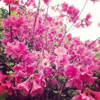 Photo taken at Camellia Hill by Mika EunJin K. on 5/10/2013