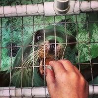 Photo taken at Morro Bay Aquarium by Tom C. on 10/27/2013
