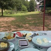 8/9/2017 tarihinde Azimet A.ziyaretçi tarafından Şelale Park'de çekilen fotoğraf