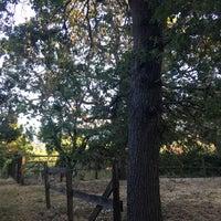 Photo taken at Los Altos Hills by Dani Y. on 5/26/2017