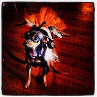 Photo taken at Stardust Lounge by C-Lane on 10/6/2012