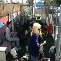 Photo taken at Baldwin Park Animal Shelter by Lance H. on 4/8/2013