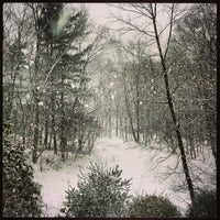 Photo taken at Bedford Hills, NY by Lukas K. on 12/29/2012
