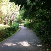 4/12/2013 tarihinde Kening Z.ziyaretçi tarafından Singapore Botanic Gardens'de çekilen fotoğraf