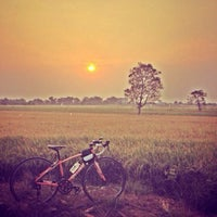 Photo taken at ต้นไม้แม่-ลูก by Manunya K. on 3/22/2014