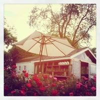 Photo taken at Mattebella Vineyards by Krissy Z. on 6/10/2013