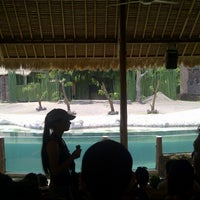 Photo taken at Jungle cruise, taman safari 3 by Mevi H. on 3/28/2013