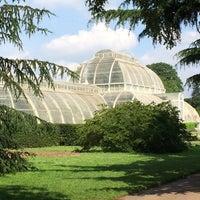Photo prise au Royal Botanic Gardens par Jana S. le6/1/2014