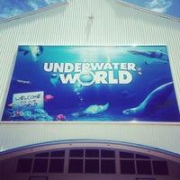 Foto tirada no(a) Underwater World por Jacky C. em 1/22/2013