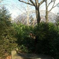 1/20/2013にAdam R.がQueens Zoo Aviaryで撮った写真
