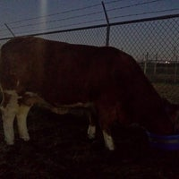 Photo taken at Clear Creek ISD Agricultural Center by Greg G. on 2/13/2014