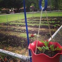 Photo taken at Cornucopia Organic Garden by Gia R. on 6/22/2013