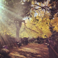 Photo taken at Tompkins Square Park by Noah F. on 10/20/2012