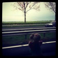 Photo taken at Brabantliner 401 naar Utrecht by Petula🍉 on 1/26/2013