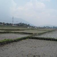 Photo taken at Sawah di Garut by rifat n. on 3/15/2014