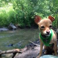 Das Foto wurde bei Central Park - North Woods von David B. am 6/15/2013 aufgenommen