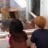 Photo taken at Lindsay Wildlife Museum by Jerry D. on 4/13/2013