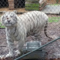 Photo taken at Carolina Tiger Rescue by Chad M. on 12/29/2012