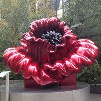Photo taken at Katharine Hepburn Garden by Vincent M. on 11/11/2013