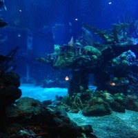 Photo taken at Coral Reef Restaurant by David S. on 10/25/2012