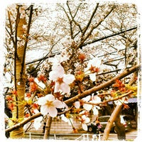 Photo taken at 桜坂 by Worldtripper2018 on 3/23/2013