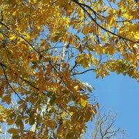 Photo taken at sweetFrog by Trish B. on 10/16/2012