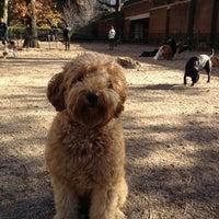 Photo taken at Bull Moose Dog Run by Kurt S. on 11/14/2012