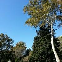 Foto scattata a Bayou Bend da Matthew C. il 11/17/2012