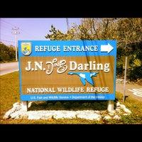 "Photo taken at J.N. ""Ding"" Darling National Wildlife Refuge by Adam G. on 3/23/2013"