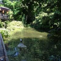 video gratuite couple watermaal bosvoorde