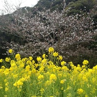 Photo taken at Tokyo German Village by Yuji O. on 3/24/2013
