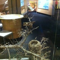Photo taken at Perot Museum of Nature and Science by Elaine B. on 12/3/2012