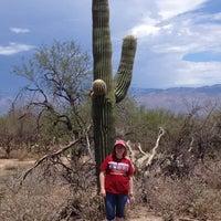 Photo taken at Saguaro National Park by John C. on 7/12/2013