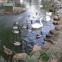 11/4/2012 tarihinde Oya K.ziyaretçi tarafından Soğanlı Botanik Parkı'de çekilen fotoğraf