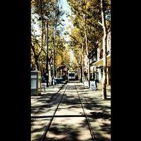 Photo taken at San Jose State University - Swenson Gate by Ercan G. on 9/12/2013