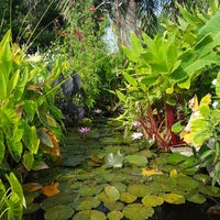 ... Photo Taken At South Texas Botanical Gardens And Nature Centre By  Travis W. On 7 ...