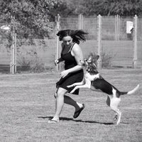 Photo taken at Chaparral Dog Park by Jeff P. on 10/22/2012