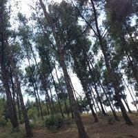 Photo prise au Parc del Guinardó par Laurinski le6/22/2013