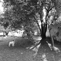 Photo taken at Orianna Hill Dog Park by Rob P. on 9/26/2012