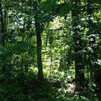 Photo taken at Washington Township Lake by Will T. on 6/15/2014