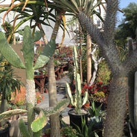 Photo taken at Hollywood Dream Garden by Thirsty J. on 3/26/2013