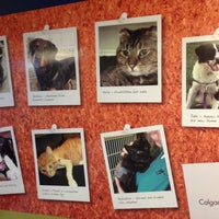 Photo taken at Calgary Humane Society by Kevin H. on 12/14/2012