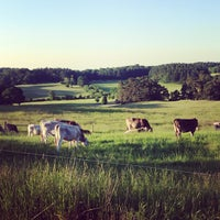 Photo taken at Shelburne Farms by Brian M. on 6/19/2013