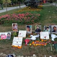 7/22/2013 tarihinde Utku B.ziyaretçi tarafından Taksim Gezi Parkı'de çekilen fotoğraf